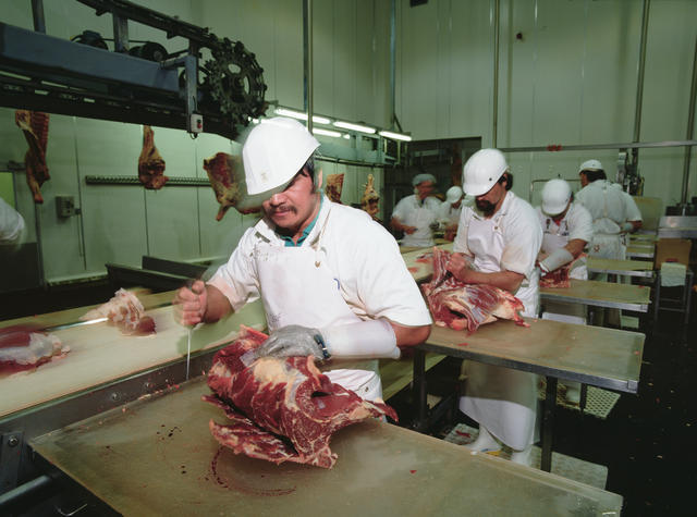 Meatworkers 1